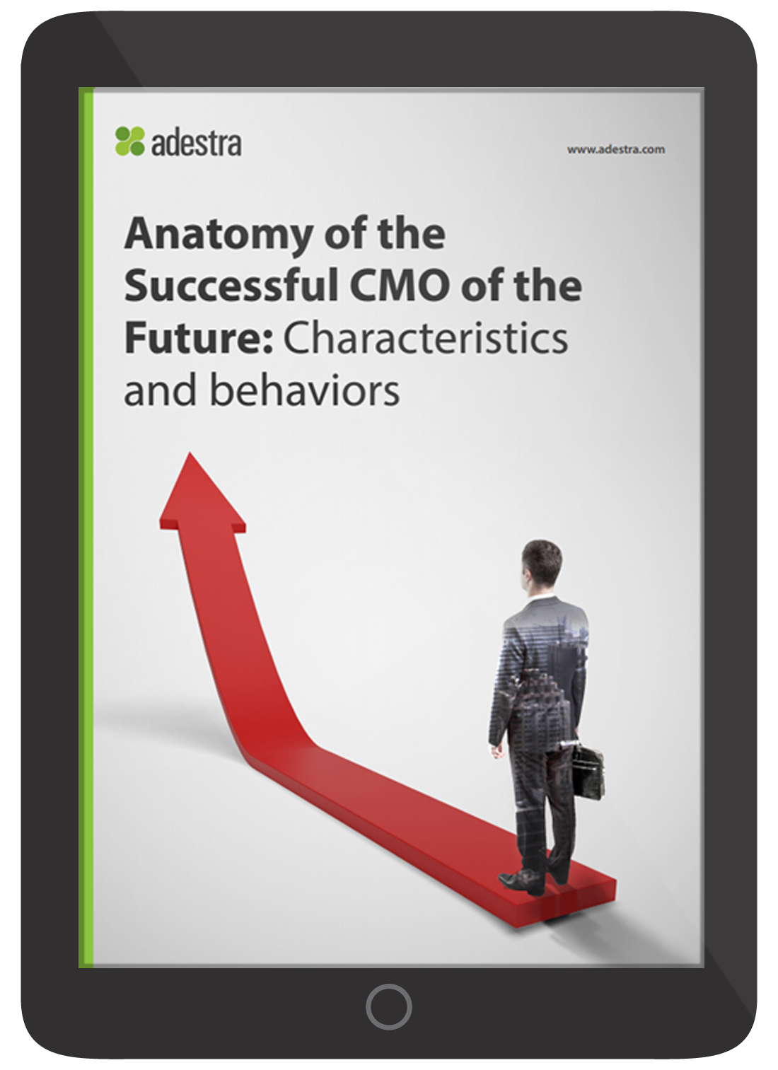 anatomy-of-the-successful